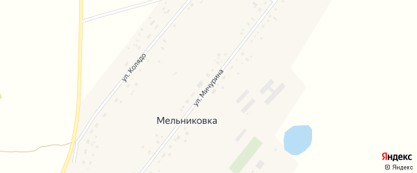 Улица Мичурина на карте поселка Мельниковки с номерами домов