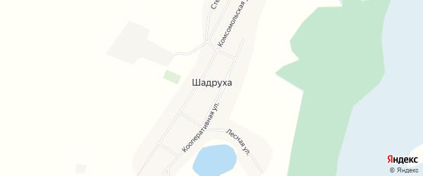 Карта села Шадрухи в Алтайском крае с улицами и номерами домов