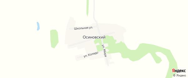 Карта Осиновского поселка в Алтайском крае с улицами и номерами домов