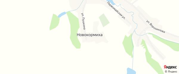 Карта села Новокормихи в Алтайском крае с улицами и номерами домов