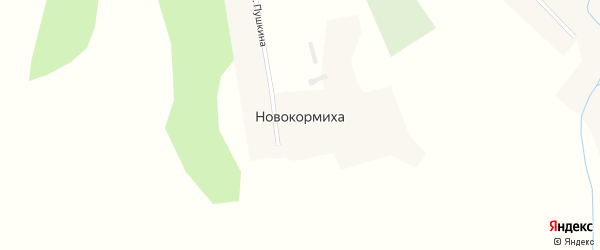 Комсомольская улица на карте села Новокормихи с номерами домов
