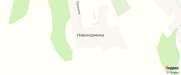 Улица Пушкина на карте села Новокормихи с номерами домов