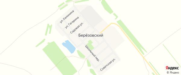 Карта Березовского поселка в Алтайском крае с улицами и номерами домов