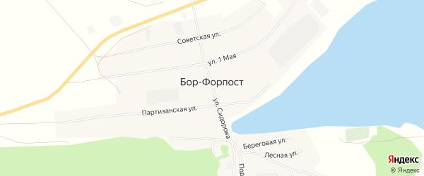 Карта села Бора-Форпоста в Алтайском крае с улицами и номерами домов