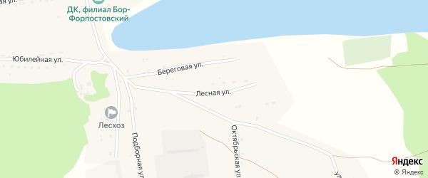 Лесная улица на карте села Бора-Форпоста с номерами домов