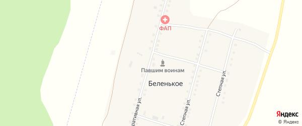 Кооперативная улица на карте Беленького села с номерами домов