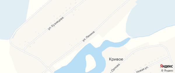 Улица Ленина на карте Кривого села с номерами домов