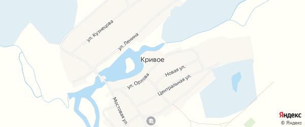 Карта Кривого села в Алтайском крае с улицами и номерами домов