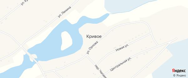 Переулок Чапаева на карте Кривого села с номерами домов