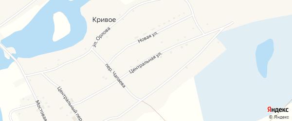 Центральная улица на карте Кривого села с номерами домов