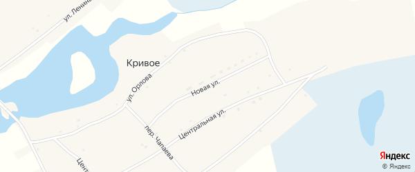 Новая улица на карте Кривого села с номерами домов
