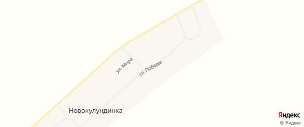 Карта поселка Новокулундинки в Алтайском крае с улицами и номерами домов