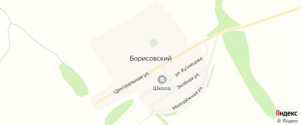 Карта Борисовского поселка в Алтайском крае с улицами и номерами домов
