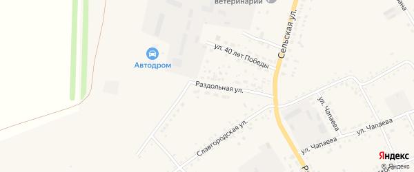 Раздольная улица на карте села Родино с номерами домов