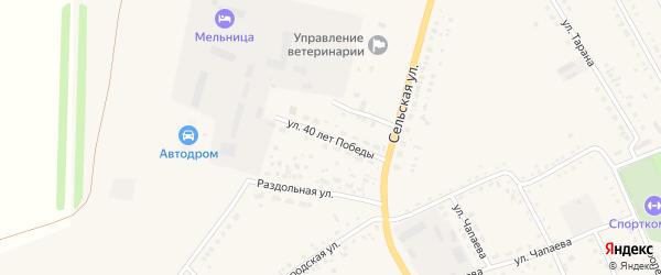 Улица 40 лет Победы на карте села Родино с номерами домов