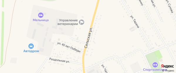 Сельская улица на карте села Родино с номерами домов