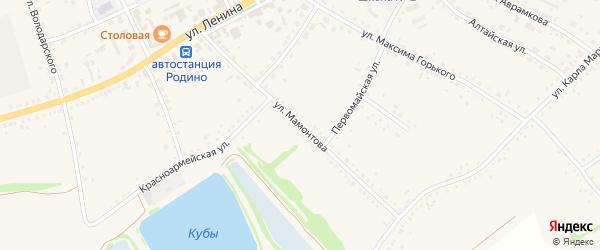 Улица Мамонтова на карте села Родино с номерами домов