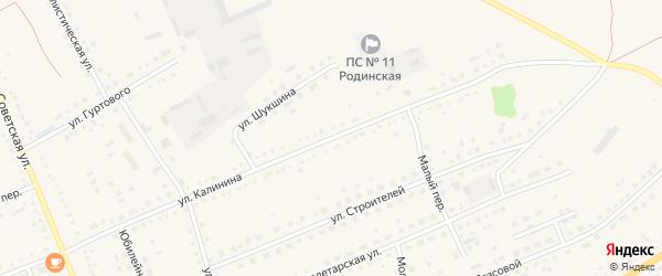 Улица Калинина на карте села Родино с номерами домов