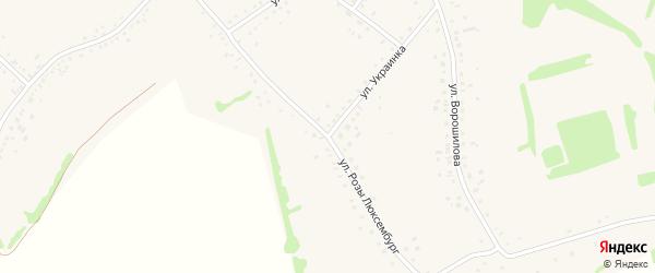 Улица Розы Люксембург на карте села Родино с номерами домов