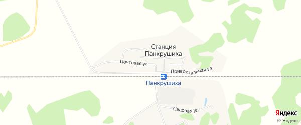 Карта станции Панкрушихи в Алтайском крае с улицами и номерами домов