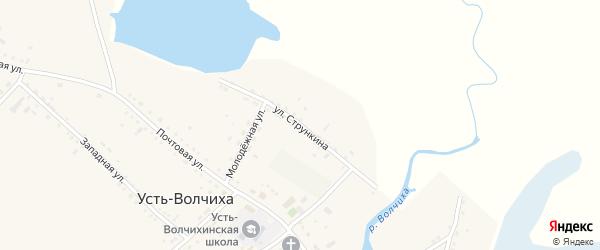 Улица Стрункина на карте села Усть-Волчихи с номерами домов