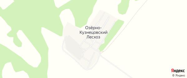 Карта поселка Озерно-Кузнецовский Лесхоз в Алтайском крае с улицами и номерами домов