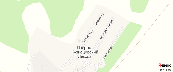 Боровая улица на карте поселка Озерно-Кузнецовский Лесхоз с номерами домов