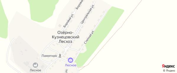Степная улица на карте поселка Озерно-Кузнецовский Лесхоз с номерами домов