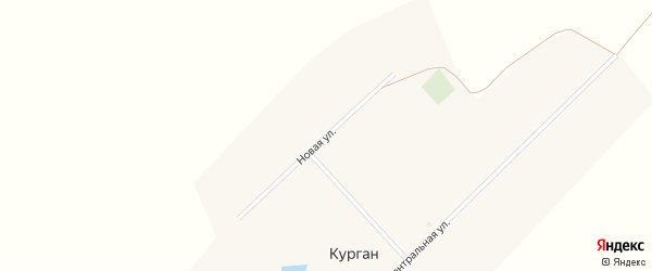 Новая улица на карте поселка Кургана с номерами домов
