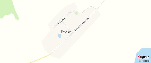 Карта поселка Кургана в Алтайском крае с улицами и номерами домов