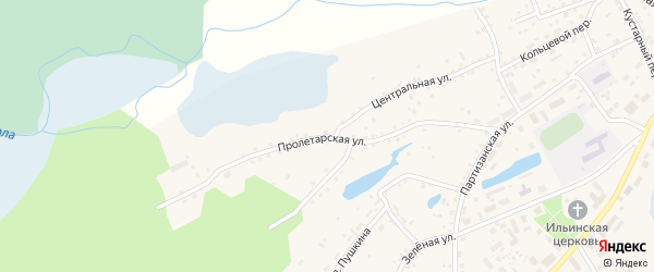 Пролетарская улица на карте села Панкрушихи с номерами домов
