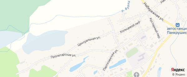 Центральная улица на карте села Панкрушихи с номерами домов