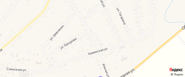 Южная улица на карте села Панкрушихи с номерами домов