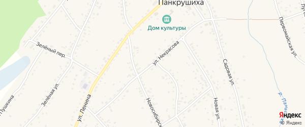 Улица Некрасова на карте села Панкрушихи с номерами домов