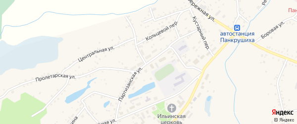 Партизанская улица на карте села Панкрушихи с номерами домов