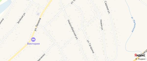 Новосибирская улица на карте села Панкрушихи с номерами домов