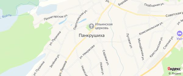 Карта села Панкрушихи в Алтайском крае с улицами и номерами домов