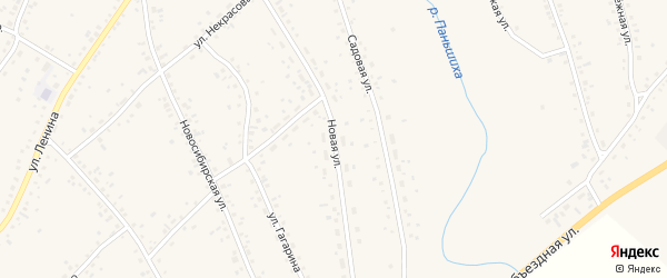 Новая улица на карте села Панкрушихи с номерами домов