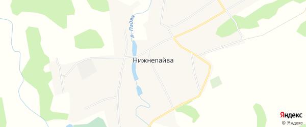 Карта села Нижнепайвы в Алтайском крае с улицами и номерами домов