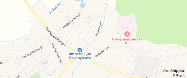 Речная улица на карте села Панкрушихи с номерами домов