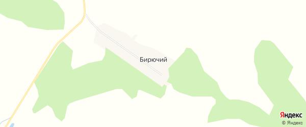 Карта Бирючьего поселка в Алтайском крае с улицами и номерами домов