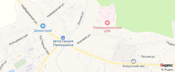 Боровая улица на карте села Панкрушихи с номерами домов