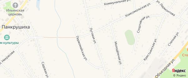 Луговая улица на карте села Панкрушихи с номерами домов