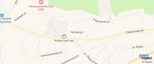 Лесная улица на карте села Панкрушихи с номерами домов