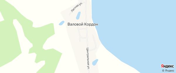 Карта села Валового Кордона в Алтайском крае с улицами и номерами домов