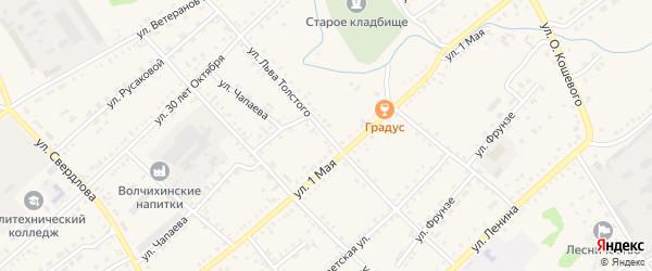 Улица Толстого на карте села Волчихи с номерами домов