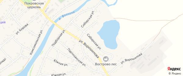 Сибирская улица на карте села Волчихи с номерами домов