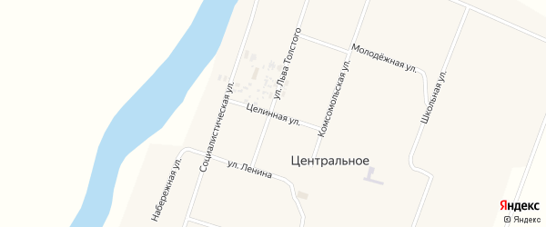 Целинная улица на карте Центрального села с номерами домов