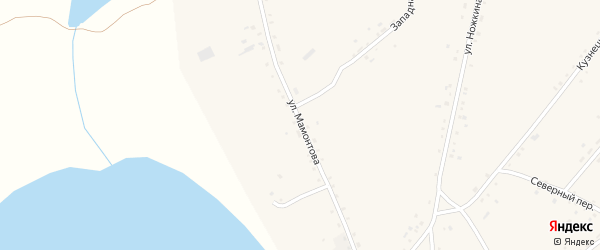 Улица Мамонтова на карте села Леньки с номерами домов