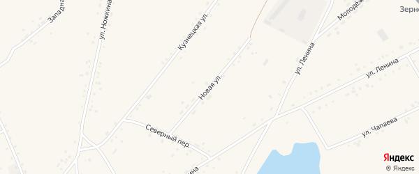 Новая улица на карте села Леньки с номерами домов